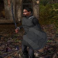 shieldsmall